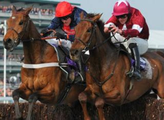 Placing horse racing bets in-running can be daunting without software to help