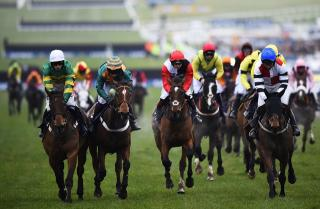 How will Caan be trading Cheltenham?
