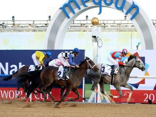 The Dubai World Cup means the flat season is almost here