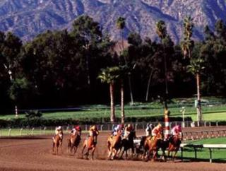 Santa Anita is the venue for this year's Breeders' Cup
