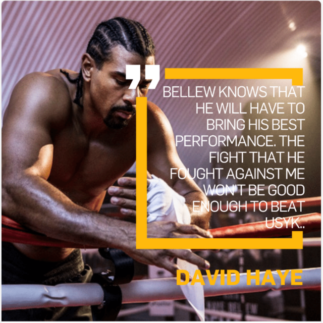 D Haye quote for Usyk.PNG