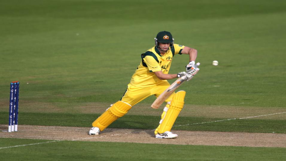 Perth scorchers vs hobart hurricanes betting preview on betfair off track horse betting locations chicago