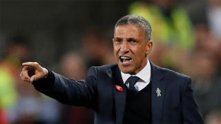 Brighton boss Chris Hughton