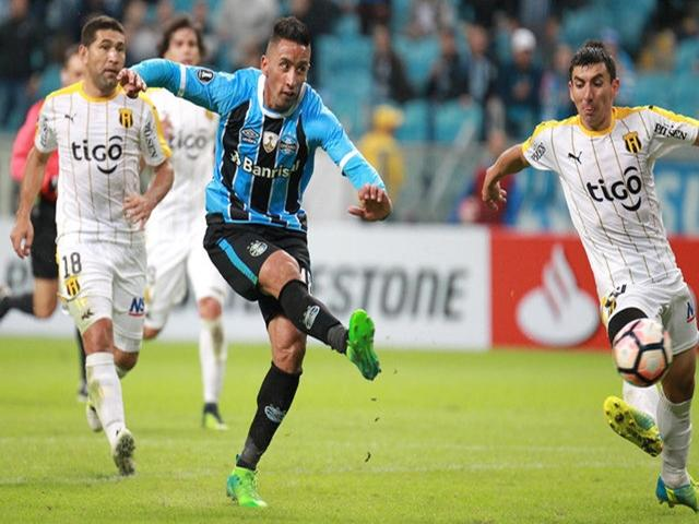 Avai vs gremio betting expert sports greene king ipa championship betting tips