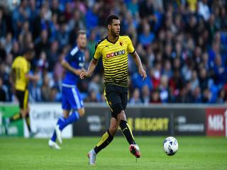 Etienne Capoue will be a vital factor in Watford's ability to tame Marc Albrighton