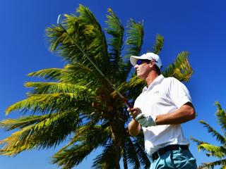 Nicolas Colsaerts looks like he is returning to form and he also loves this week's venue in Mauritius