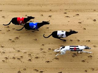 Timeform pick out three bets from Nottingham