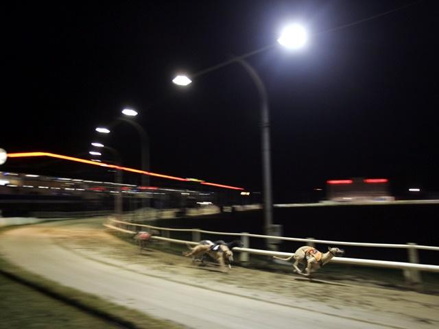 There is greyhound racing from Romford on Friday evening