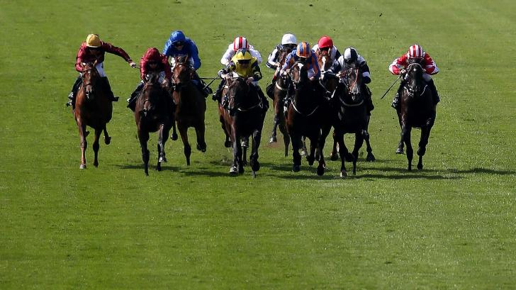 Flat racing action at Newmarket