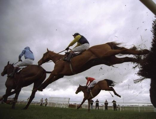The Cheltenham Gold Cup was the feature on Friday