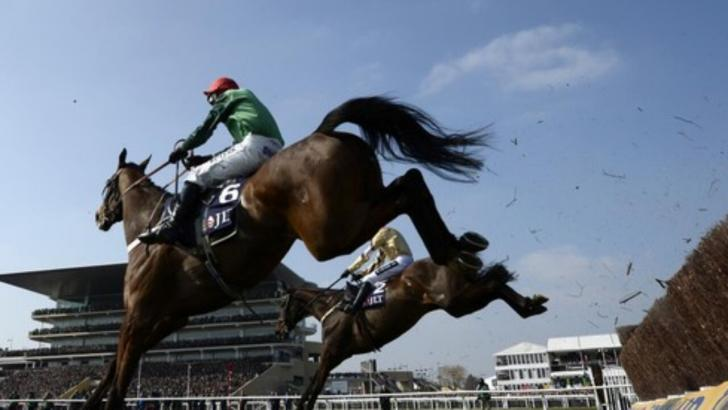 Cheltenham Jumps