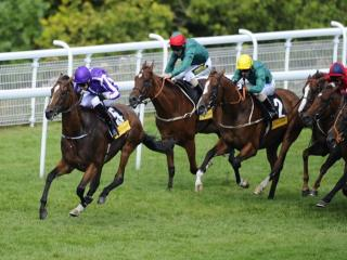 Tony Keenan thinks Highland Reel can win the Irish Derby