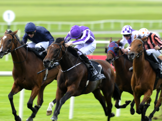 Aidan O'Brien saddles the last of today's Irish Smartplays