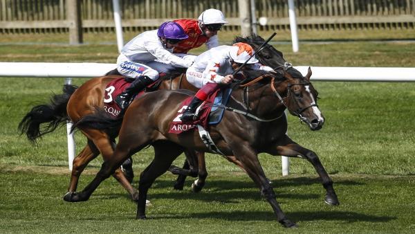 Ryan moore 2000 guineas betting australian inplay betting
