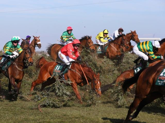grand national guide to betting on horse