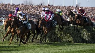 Grand National action
