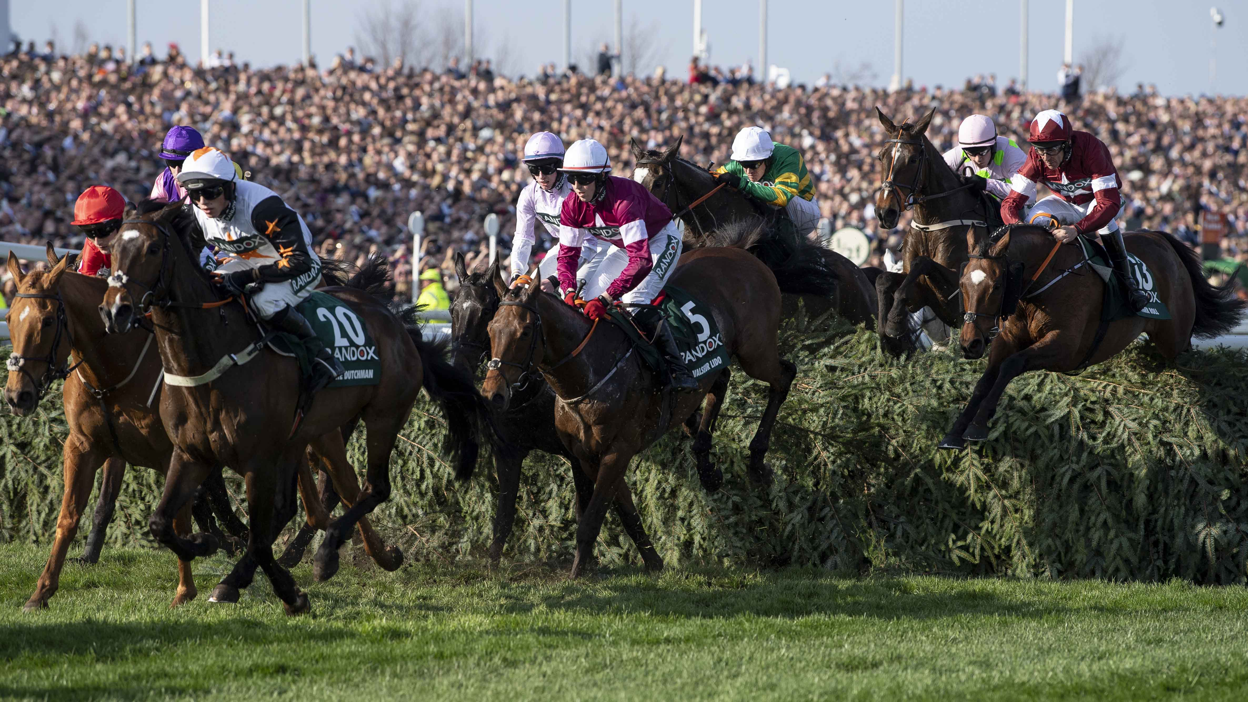Aintree runners at fence inc Tiger Roll right 1280.jpg
