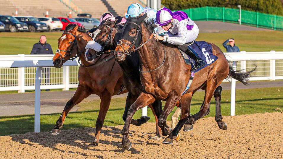 Betting betfair timeform racing sharpening bettingadvice