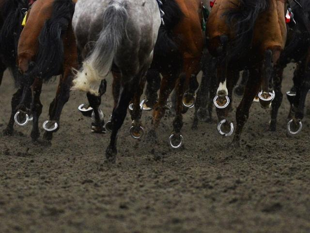 Timeform have found three bets for you at Dundalk