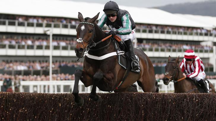 tingle creek bettingadvice