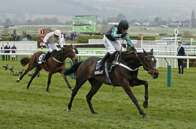 Image result for altior 2016 supreme
