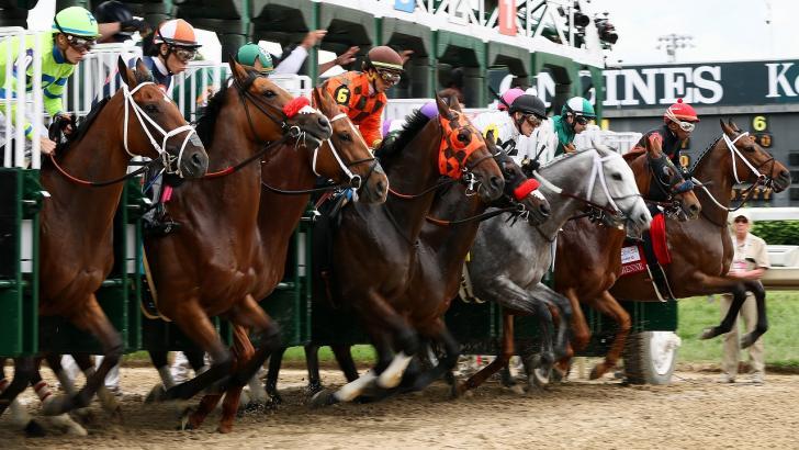 Timeform usa or betting sport betting software mac
