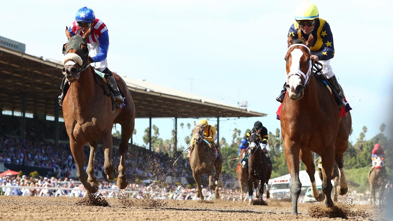 American horse racing betting explained in spanish djokovic kohlschreiber bettingexpert tips