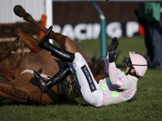 Annie Power put last year's Mares' Hurdles mishap behind her by winning the Champion Hurdle