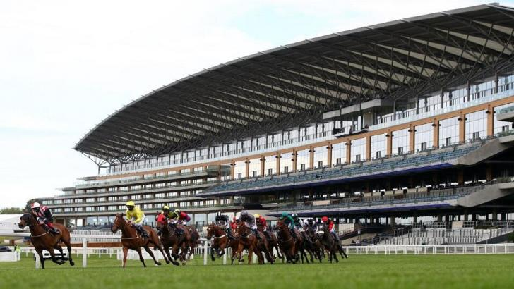 Royal Ascot field with empty stand