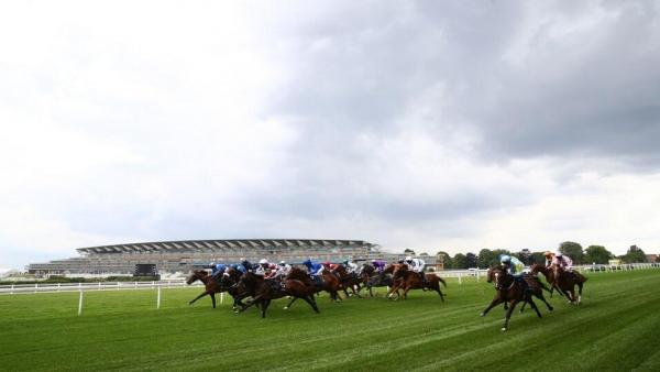 Ascot field with stand landscape.jpg