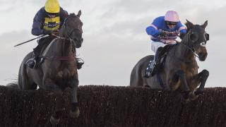 The Cotswold Chase takes place at Cheltenham on Saturday
