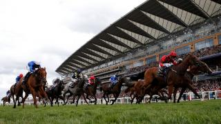 It is British Champions Day at Ascot on Saturday