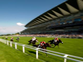Follow The Money comes from Champions Day at Ascot