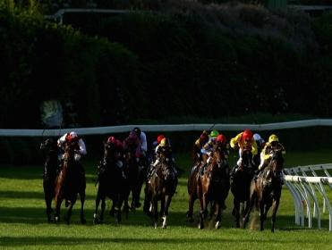 The Cox Plate takes place at Moonee Valley on Saturday