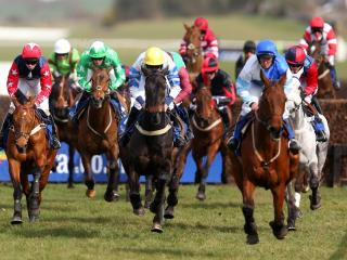 It's Scottish Grand National day at Ayr on Saturday