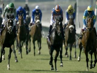 Timeform's US team provide you with three bets for tonight