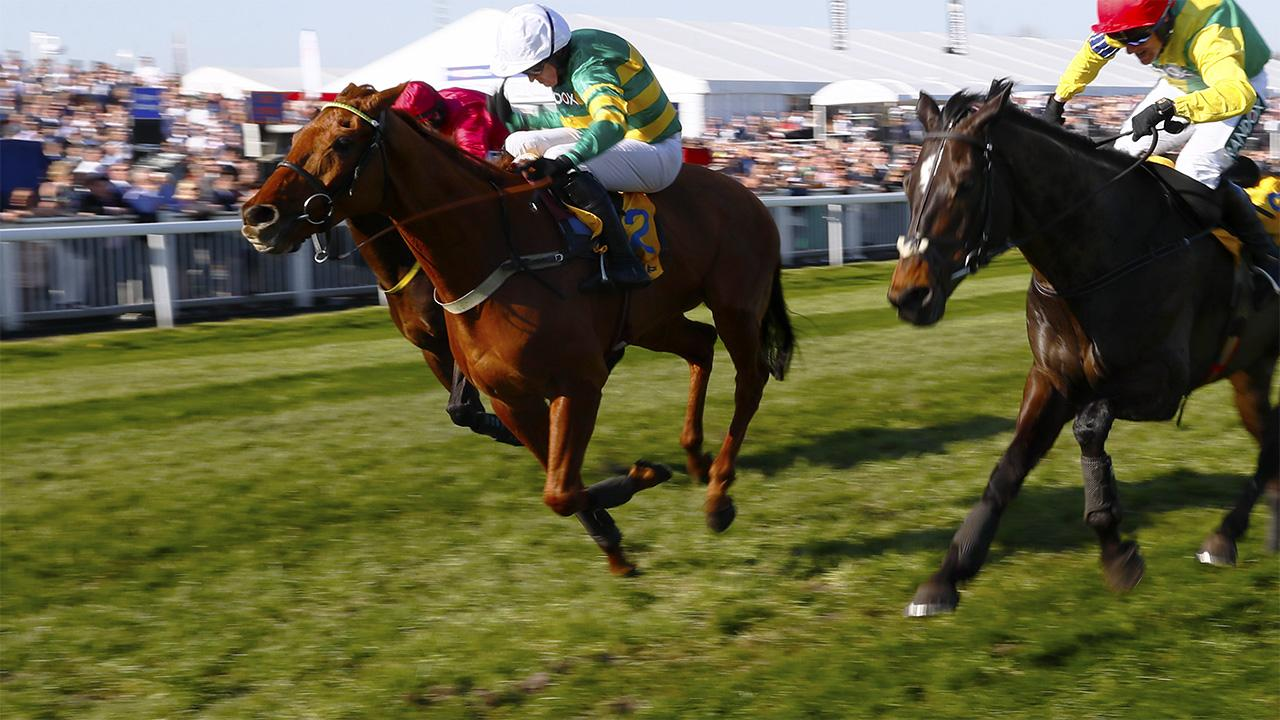 Adam expects Coney Island to take the Betfair Ascot Chase en route to a tilt at the Gold Cup