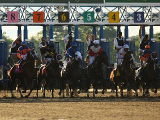 There is racing at Belmont Park on Friday evening