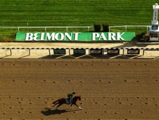 Two of tonight's bets run at Belmont