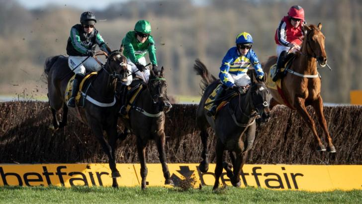 Betfair fences national hunt racing