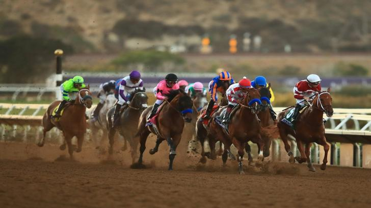 Horses running in the Breeders' Cup