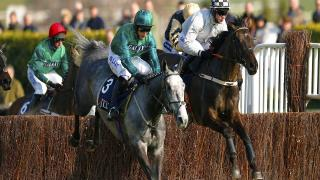 Despite winning easily, Melon is still fairly friendless in the Champion Hurdle market
