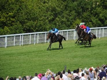 Brown Panther wins the Goodwood Cup