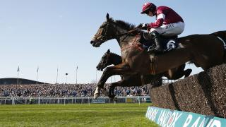 Adam thinks Outlander can go well in the Betfair Chase