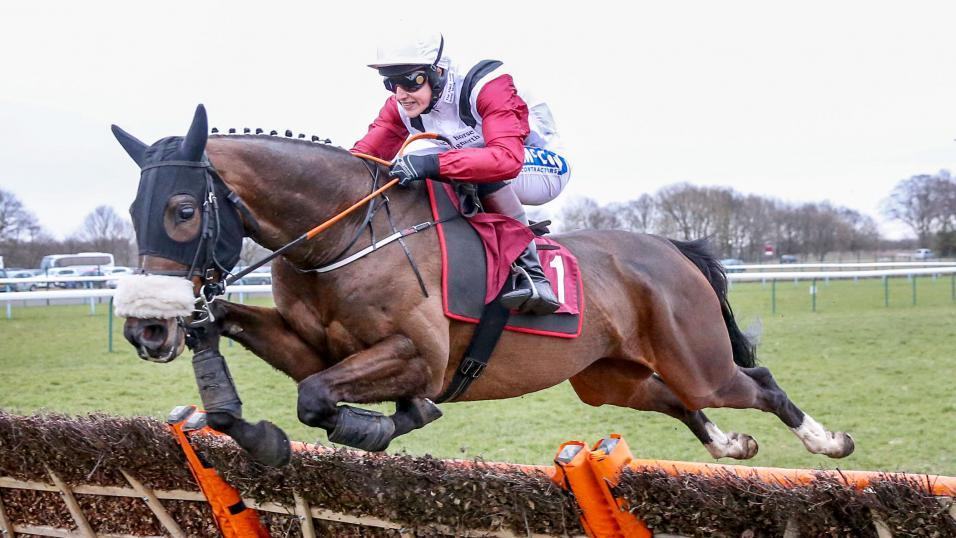Calipso Collonges jumps horse