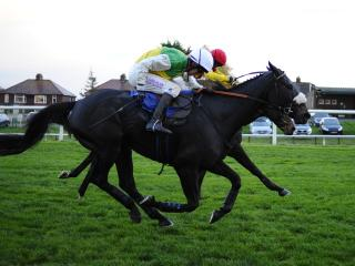 There is jumps racing from Carlisle on Thursday