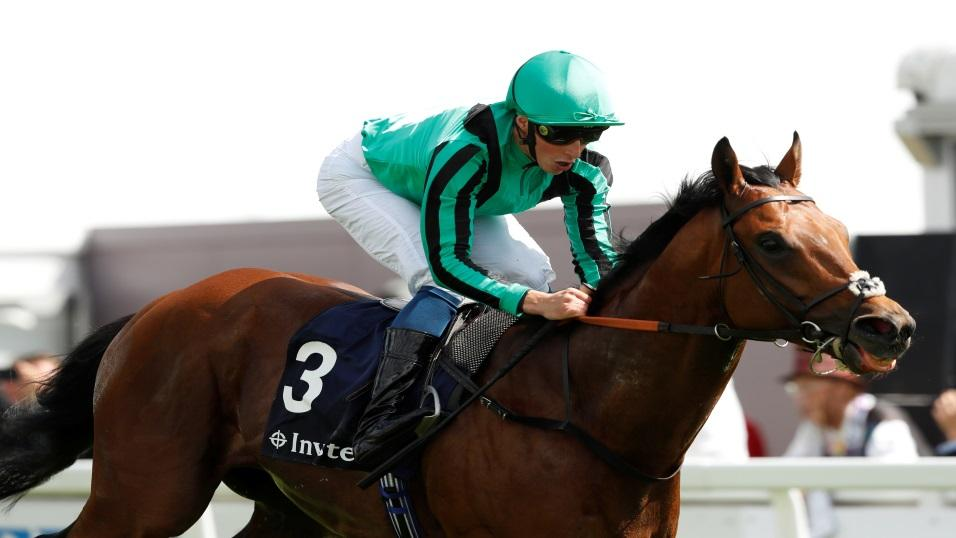 Century Dream in action at Epsom this year