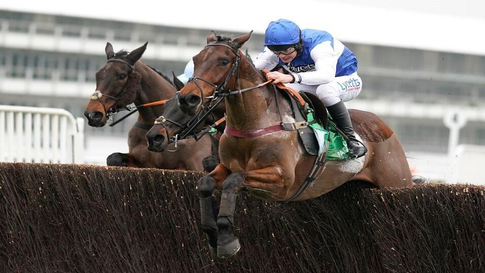 Fakenham races bettingadvice trade binary options safely surrendered