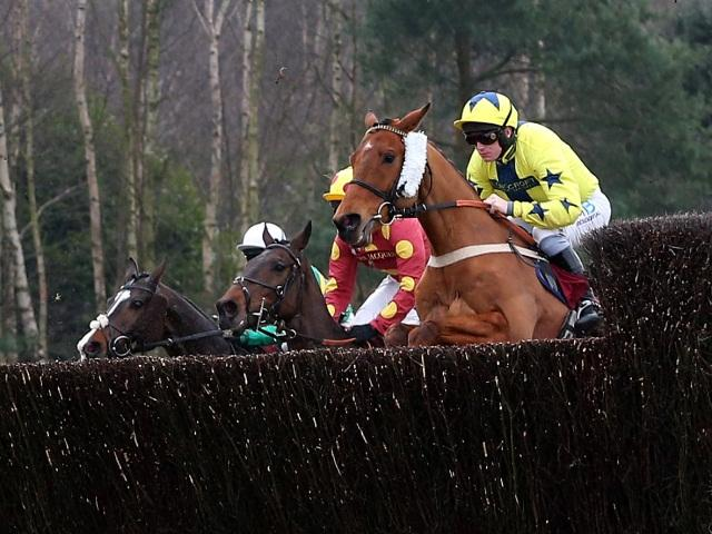 There is jumps racing from Haydock on Friday