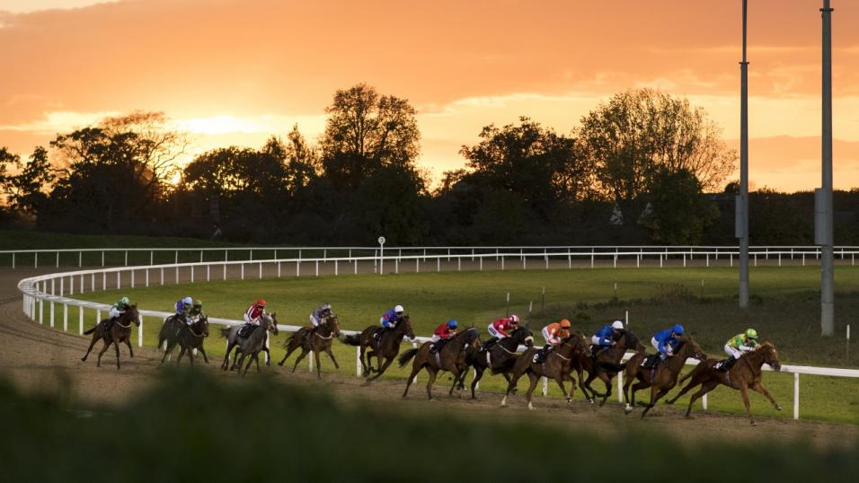 Racing at Chelmsford